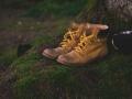 Tęsiamas dialogas su batų pardavėjais